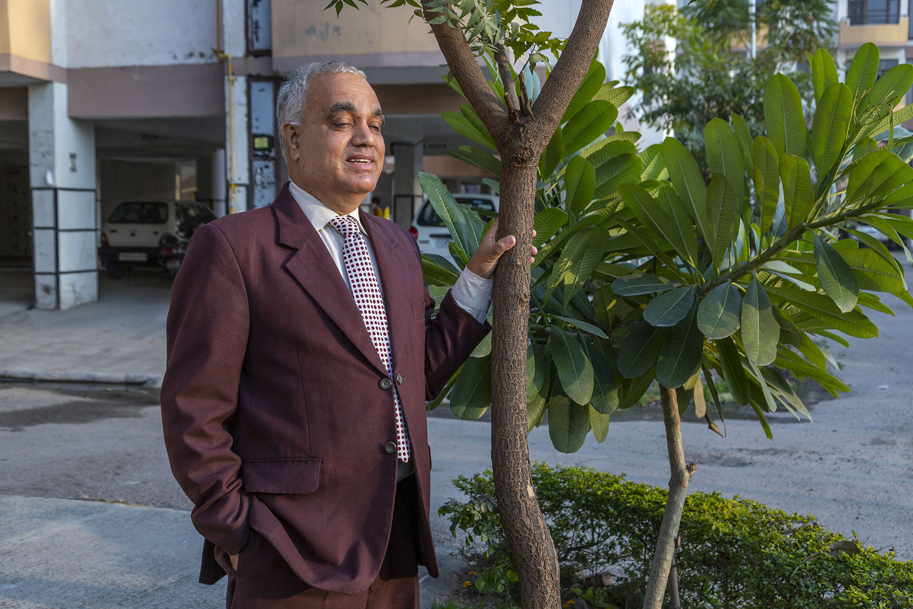 Jayara in a brown suit standing with his left hand holding the slender trunk of a neem tree, next to which a plumeria sapling displays its lush green leaves