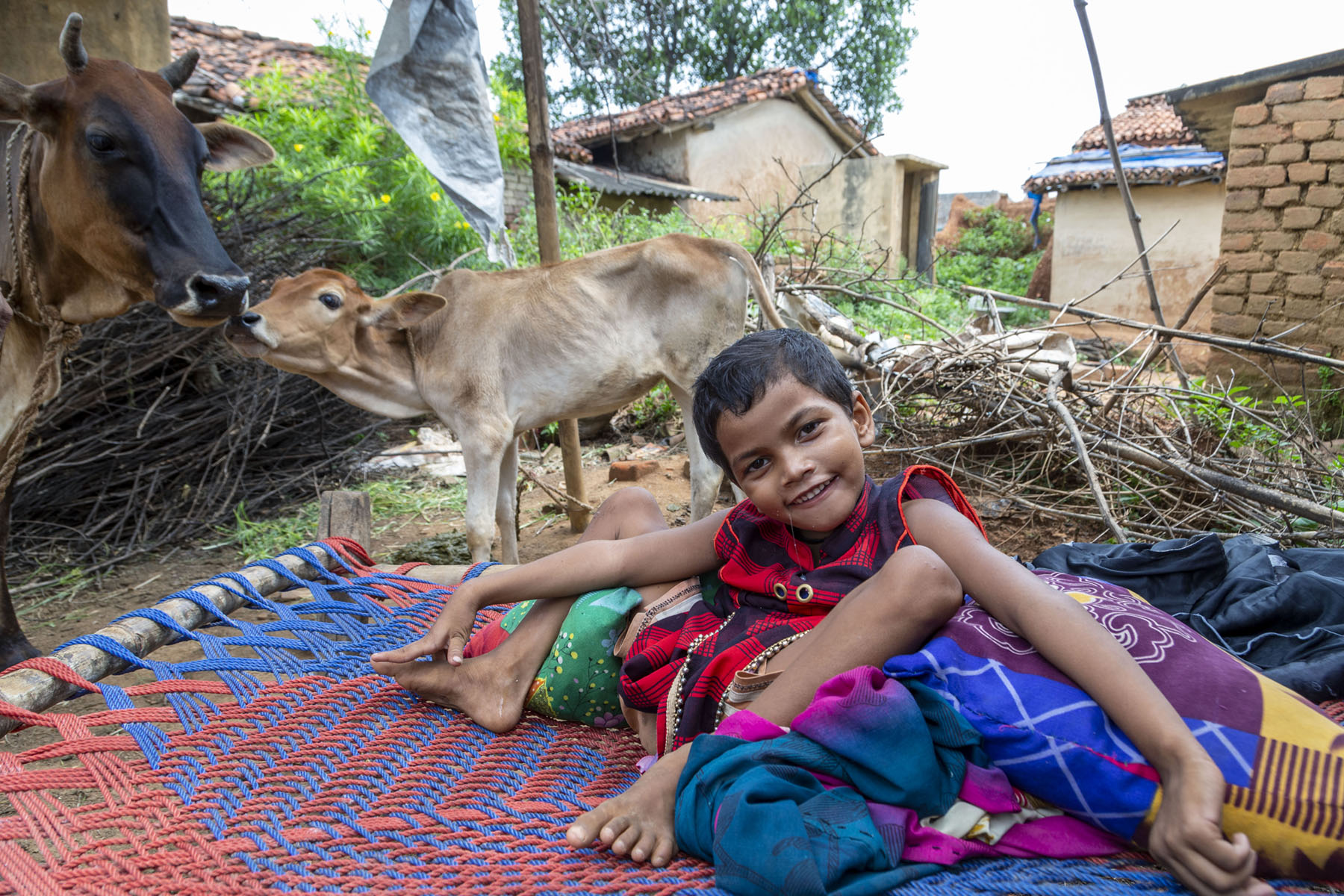 Manisha dressed in a red and brown frock is curled up in a charpoy (string cot) outdoors. She is propped up against two pillows and sits among scattered clothes. Each leg is bent at the knee and rests against a pillow. Her head is tilted and arms are stretched out on either side of her. To the left of the charpoy, a cow with a brown-and-black face and brown-and-cream body is standing and looking at her. A large calf of the same colour is standing and putting its mouth against the cow's mouth. In the background are two buildings with tile roofs.